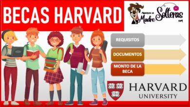 Becas Harvard 2021-2022