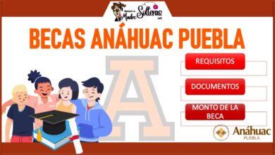 Becas Anáhuac Puebla