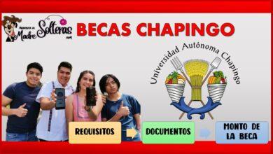 Becas Chapingo 2021-2022