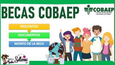 Becas COBAEP 2021-2022