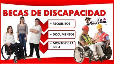 Becas de discapacidad