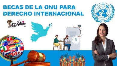becas-de-la-onu-para-derecho-internacional-2021