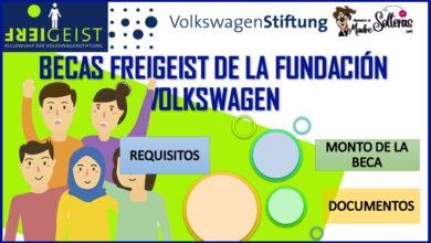 Becas Freigeist de la Fundación Volkswagen-2021