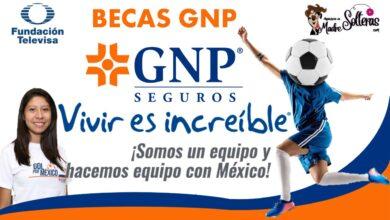 becas-gnp