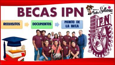 Becas IPN 2021-2022