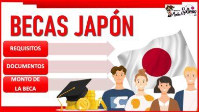 Becas Japón 2021-2022