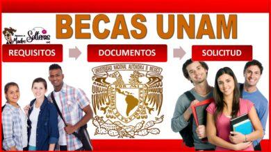 Becas UNAM