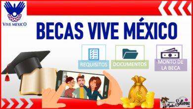 Becas Vive México 2021-2022