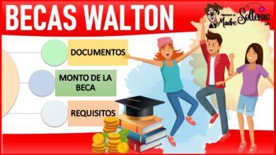 Becas Walton 2021