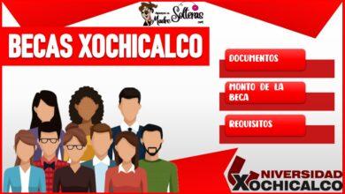 Becas Xochicalco