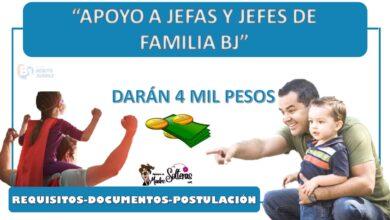 daran-4-mil-pesos-a-madres-y-padres-de-familia