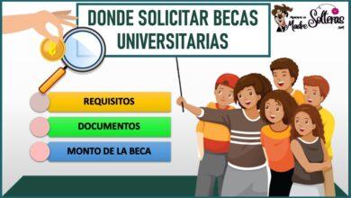 Donde solicitar becas Universitarias 2021-2022