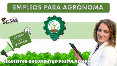 empleos-para-agronoma