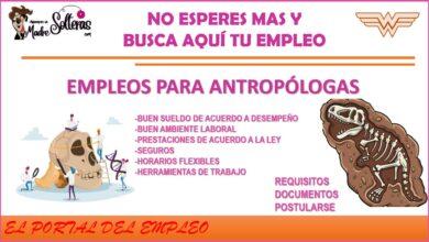 empleos-para-antropologa