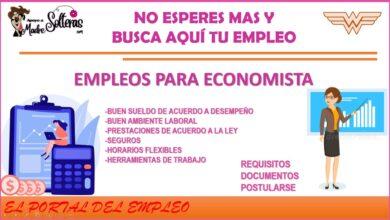 empleos-para-economista