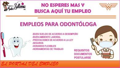 empleos-para-odontologia