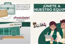 hay-trabajo-en-el-banco-del-bienestar-postulate